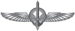 Дувдеван (Подразделение-217)