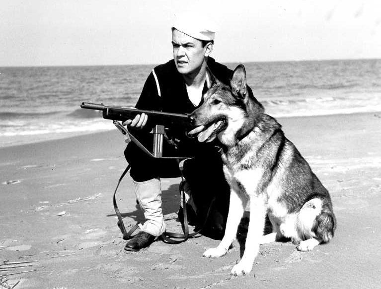 Сотрудник Береговой охраны США с «Рейзингом» и служебной собакой.