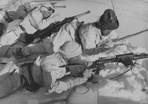 Итальянские альпийские стрелки в горах Албании, помимо пулемёта Breda Mod. 30 они вооружены 6,5-мм карабинами Carcano Moschetto Mo. 1891