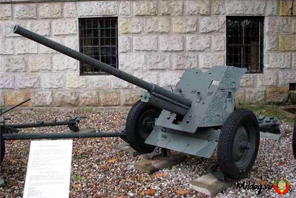 45-мм противотанковая пушка образца 1942 г. (М-42)