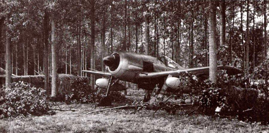 Бомбардировочный вариант истребителя, FW-190G-3 укрытый в лесу.