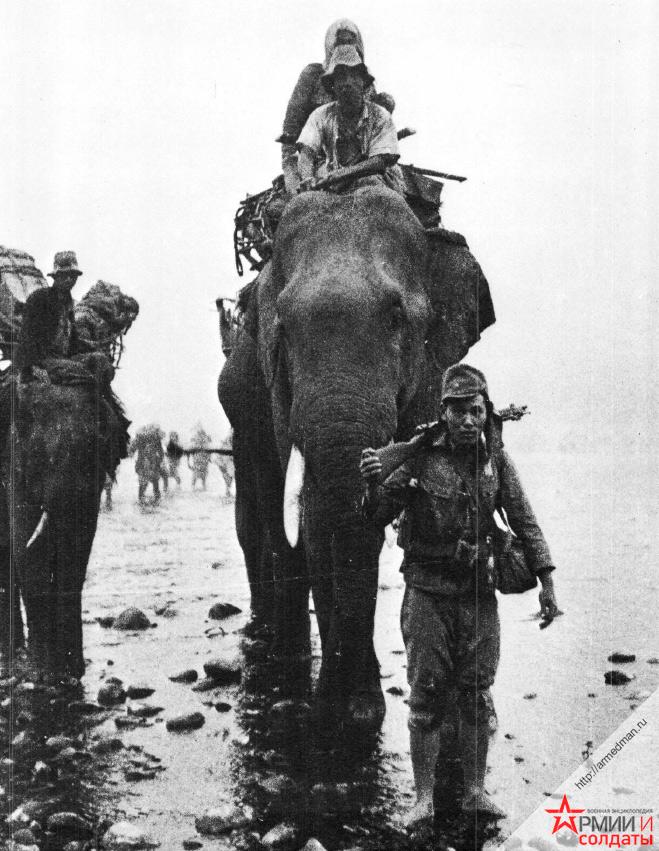 японские-солдаты-и-транспортные-слоны-в-Бирме