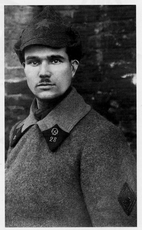 Боец 28-го <a href='https://arsenal-info.ru/b/book/446510402/118' target='_self'>стрелкового полка</a> РККА, 1924 г.