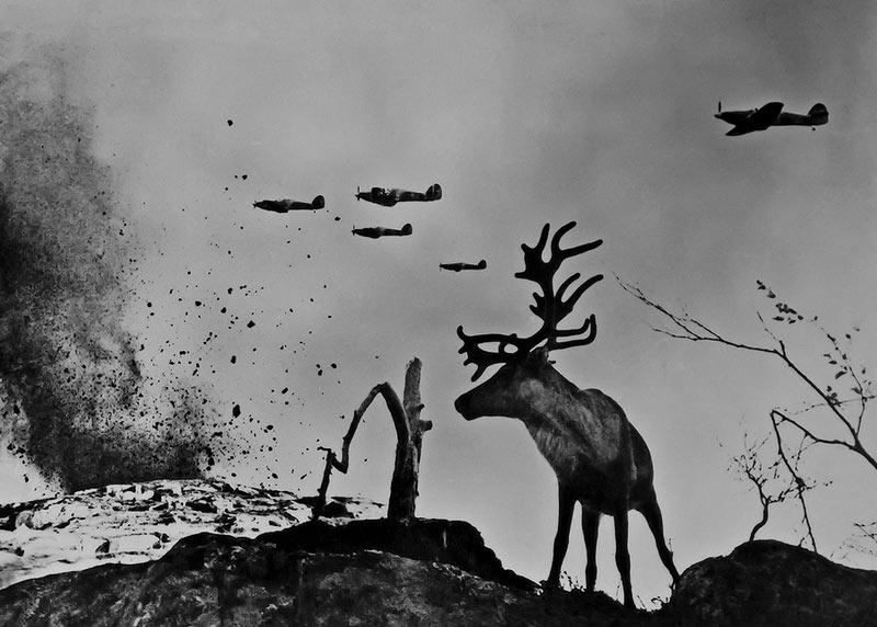 Эпизод войны в Заполярье