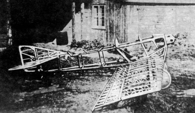 АНТ-1 - первый самолет Туполева