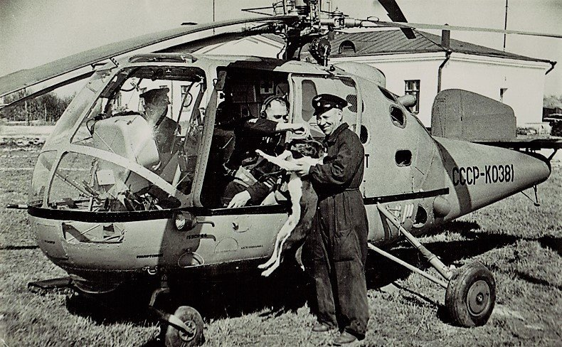 Вертолет Ка-15