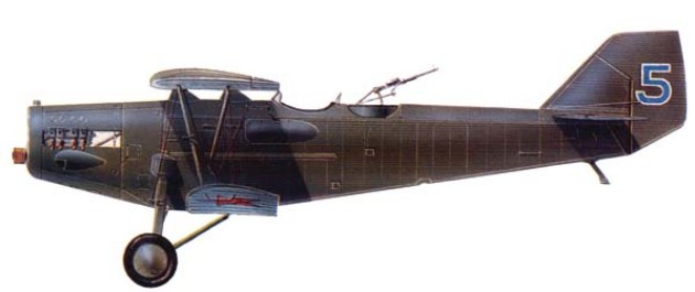 Самолет Р-3 ЛД, Среднеазиатский военный округ, 1931 г.