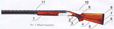 1 - цевье, 2 - шейка ложи, 3 - пистолетный выступ, 4 - приклад, 5 - нижняя образующая приклада, 6 - носок приклада, 7 - затыльник приклада, 8 - пятка приклада, 9 - гребень приклада, 10 - продолжение прицельной линии, 11 - прицельная линия
