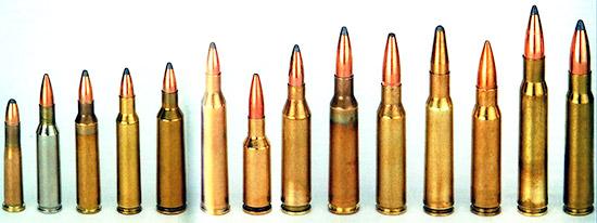Альтернативы: для проводимых спортивных соревнований по стрельбе на 100 м находят применение патроны, начиная от .22 Hornet, применяемого в запрещенное для охоты время для тренировки, вместо проверенных временем штатных боевых патронов. Слева направо: .22 Hornet, .222 Remington, .223 Remington, .222 Remington Magnum, .22-250 Remington, .220 Swift, 6 mm PPC USA, .243 Winchester, 6,5x55 Schwedisch Mauser, 7mm-08 Remington, 7x57, .308 Winchester, .30-06 Springfield и 8x57IS.