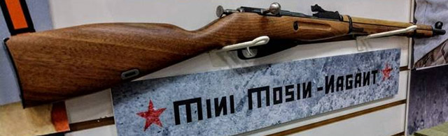 Mini Mosin Nagant .22 LR