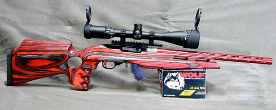 Custom Ruger 10/22 Rifle