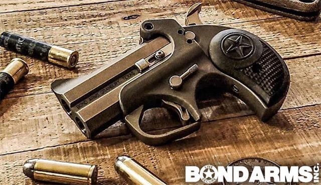 Bond Arms Rough