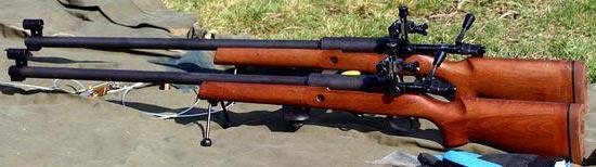 L81A1 учебный вариант M82