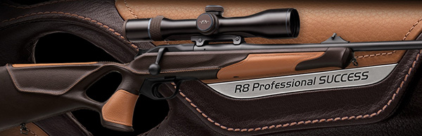 R8 Professional Success