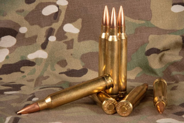 .300 Winchester Magnum / 7,62х67