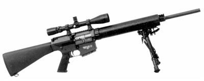SR-25 LMR