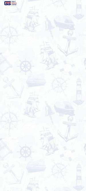 Предпросмотр для www.shipservicecenter.ru — Судовой сервисный центр