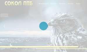 Предпросмотр для www.sokol-n.ru — Сокол ПТБ