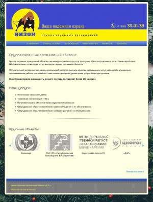 Предпросмотр для bizon-ptz.ru — Бизон