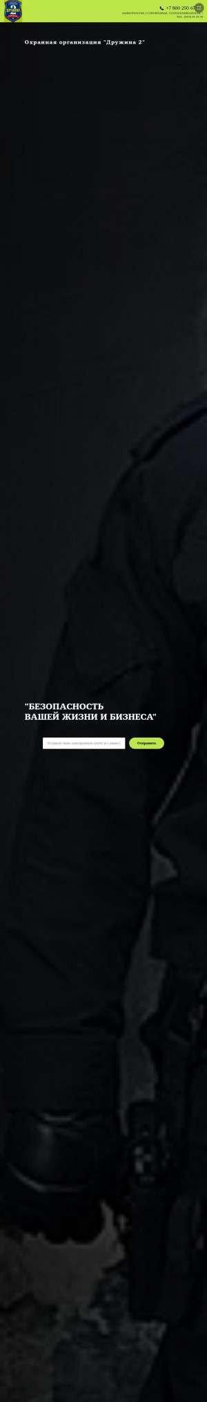 Предпросмотр для drugina2.ru — Дружина 2