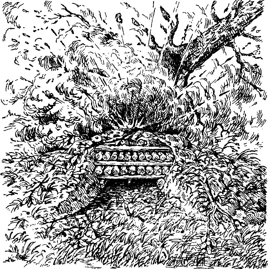Как действует граната