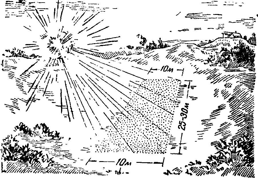 Бризантная граната