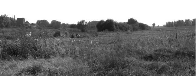 Вид того же места в наши дни.Сентябрь 2009года. Хорошо виден Крахмальный завод, а также небольшой ставок, образовавшийся в результате строительства запруды на рекеДруть (фото автора).