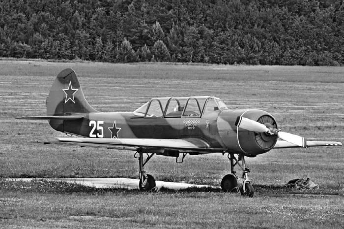 Учебно-тренировочный самолет Як-52А на аэродроме Боровое (ДОСААФ Белоруссии)