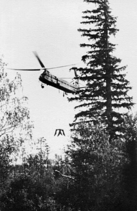 Як-24 на прокладке газопровода Саратов—Ленинград