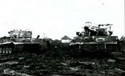 Часть панорамы «Тигров», захваченных в районе Умани. Весна, 1944 г.