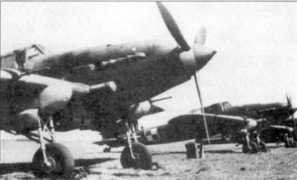 Строй Ил-2 Тип 3 польских ВВС. Все самолеты имеют обтекатели пушек позднего образца. Вторая машина оборудована радиополукомпасом РПК-10, антенна которого видна возле киля.