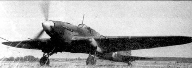 Этот польский Ил-2 Тип 3 имеет радиоантенну переставленную на передний переплет фонаря. Кок винта окрашен белым, а передняя часть обтекателей ниш шасси — красным.
