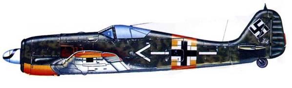 Fw 190A-5. II-я группа неустановленного полка (вероятно JG 51 или JG 54), Восточный фронт, 1943 год.