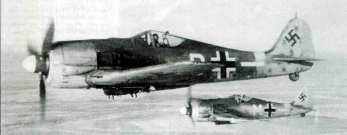 Fw 190F-2, зима 1943 года. Самолет принадлежал II-й группе, вероятно, II./SG 10. Камуфляж типичный для этого периода.