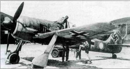 Два снимка Fw 190A-4, W.Nr. 1453X1 из IV./SKG 10, Коньяк, Франция, 1943 год, пилот — обер-фенрих Гельмут Венк. С самолета сняты подкрыльсвыс бомбодержатели, которые первоначально имелись. В кромке левого крыла установлен посадочный прожектор. Вооружение самолета сократили, демонтировав пушки MG FF из консолей крыльев.