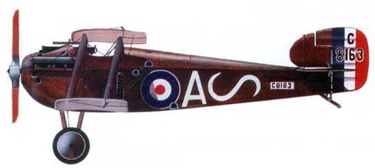 Английский истребитель «Сопвич Долфин» №8163, 87-я эскадрилья, 1918 год.
