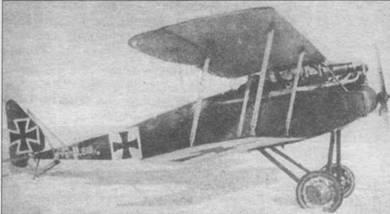 «Галъберштадт D.II» №818/16, зима 1916/1917г.г.
