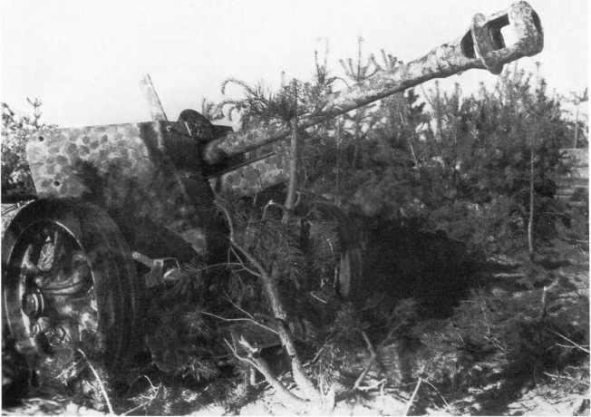 Трофей Красной Армии — 75-мм противотанковая пушка Pak 40, захваченная в ходе контрнаступления войск Центрального фронта на орловском направлении. Июль 1943 года. Ствол орудия находится в откате, обратите внимание на оригинальный «точечный» камуфляж (АСКМ).