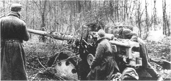 Расчет 88-мм противотанковой пушки Pak 43/41 готовится к бою. Венгрия, осень 1944 года. Из-за больших габаритов орудия замаскировать его на огневой позиции было нелегкой задачей (АСКМ).