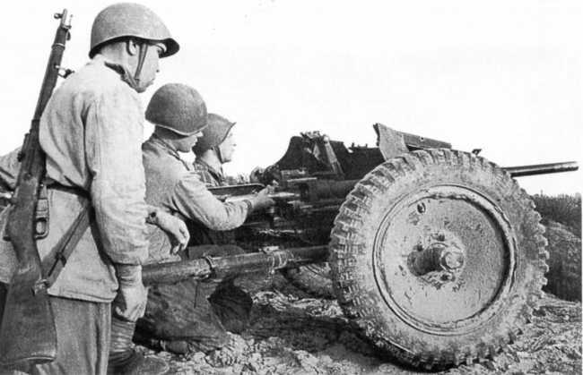 Орудийный расчет гвардии старшины П. Чубанова ведет огонь из 37-мм трофейной пушки Pak 35/36. Действующая армия, август 1943 года (РГАКФД).