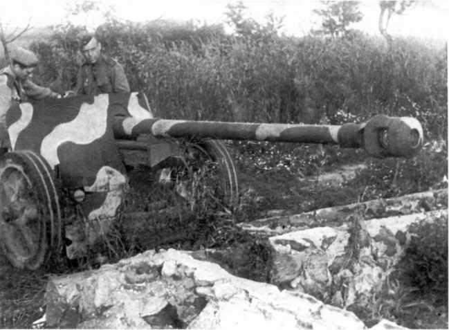 Бойцы Красной Армии осматривают трофейную немецкую пушку Pak 40. 2-й Прибалтийский фронт, западнее города Опочка, 1944 год. Обратите внимание на камуфляж орудия (РГАКФД).
