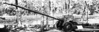 Пушка гладкоствольная Т-12 (2А19) Рапира калибра 100 мм. Дальность выстрела — 8,2км. Фото Геннадий Шубин