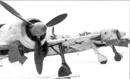 Нижние створки капота на Восточном фронте окрашивали в желтый цвет, используя их в качестве элементов быстрой идентификации. У всех трех Fw 190А-4 из I./JG 54 створки капота желтые.