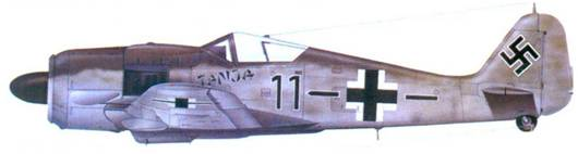 19.Fw 190A-8, лейтенант Гюнтер Хайм, сентябрь 1944 года