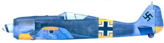 41.Fw 190A-6, майор Эрих Рудорффер, июнь 1944 года