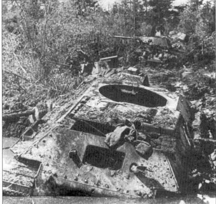 В ходе битвы на Курской Дуге основной целью немецкой штурмовой авиации были советские танки. В ходе вылетов в район Ржева пилоты II./SchlG 1 заявили 45 уничтоженных советских танков.