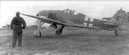 Ноябрь 1943 года, Витебск. На этом Fw 190А-6 (W.Nr. 410004) Вальтер Новотны одержал свою 250-ю победу. Это случилось 14 октября 1943 года. Противником Новотны был неизвестный советский пилот на Р-40. Бой длился более 10 минут. Снимок сделан в момент, когда самолет выкатывают из полевого укрытия.