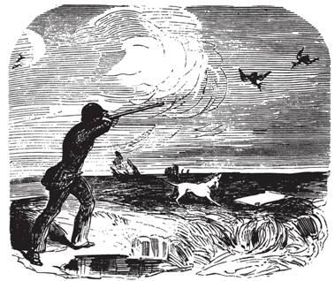 Рис. 103. Стрельба в чибисов с помощью белого платка и белой собаки. Из книги Т. Дейе «Старый охотник» (1850)