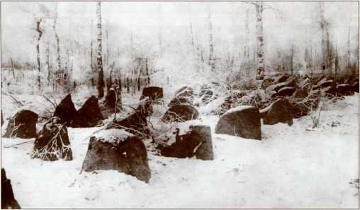 Гранитные надолбы в районе Куолемаярви (озеро Пионерское).