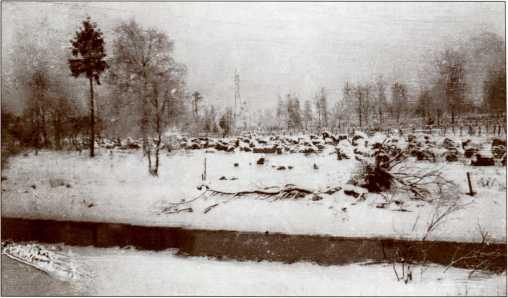 Противотанковые надолбы и берег реки, предположительно — район Муолаа (Грибное).